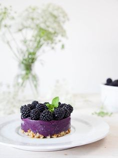 Blackberry Maple Frozen Yogurt Tart