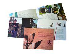 BROCHURA - design, paginação, tratamento de imagem e arte final