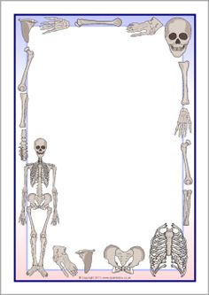 Skeletons A4 page borders (SB7853) - SparkleBox