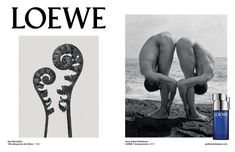 All Karl Blossfeldt, Arno, The Style Council, Beyond Skin, Art Commerce, Dior Beauty, Vogue China, Ann Margret, Advertising