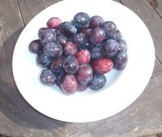 damsons ready for cooking