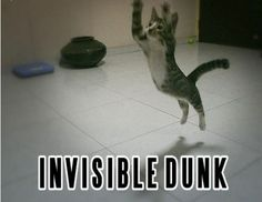 Invisible Dunk!