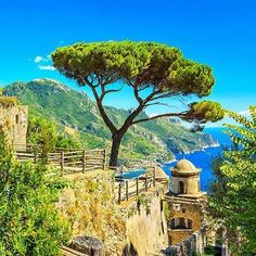 Savourez la liberté de découvrir #Naples et la côte Amalfitaine à travers cet autotour ! #Italie #voyageprivefrance #trip #tourisme #upgrade #travel #voyage #voyageprive #holiday #discover #seetheworld #instagram #instatravel #instavoyage #traveling #vacation #lovetravel #beautiful #sun #dream #evasion #detente #break Hotels-live.com via https://www.instagram.com/p/BFWc_CuBMiX/ #Flickr