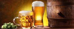 Rota da cerveja SC Brasil