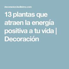 13 plantas que atraen la energía positiva a tu vida | Decoración