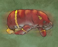 DC And Marvel Superheroes As Manatees