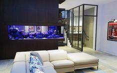 Luxury Discus Aquarium - Aquarium Architecture Home Aquarium, Aquarium Design, Aquarium Ideas, Big Aquarium, Discus Aquarium, Sofa Design, Henley Homes, Living Room Designs, Living Room Decor