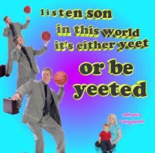 Image result for yeet