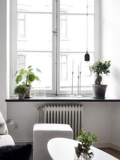 Plants on window sill, window ledge Plants On Window Sill, Window Sill Decor, Window Ledge, Tranquil Bedroom, Living Room Decor, Bedroom Decor, Interior Architecture, Interior Design, Minimalist Room