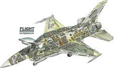 Lockheed Martin F-16E Block 60 Desert Falcon cutaway