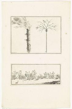 Bernard Picart   Walmende fakkel en constructies om vogels te vangen, Bernard Picart, 1730   Twee voorstellingen op een blad. Boven: Een brandende bos takken en een zelfgemaakte boom om vogels mee te vangen. Onder: Verschillende strikken tussen de struiken om vogels mee te vangen.