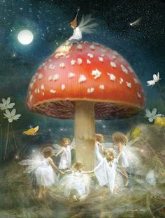 Fairies dancing happily around a toadstool under the full moon! Midsummer's Eve - 500pc Jigsaw Puzzle By Ravensburger http://www.seriouspuzzles.com/i12826.asp