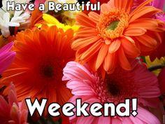Weekend!~