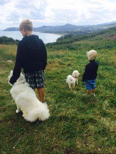 Walkies Samoyed, Mountains, Nature, Travel, Naturaleza, Viajes, Samoyed Dog, Destinations, Traveling