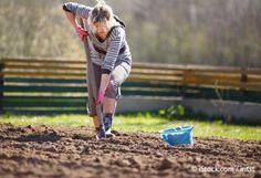 beneficios de la jardineria