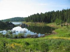 Rampart Reservoir Single Track bike trail near Woodland Park, CO