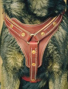 Leather Dog Harnesses - Latigo Leather Padded Tracking Harness #DogHarness