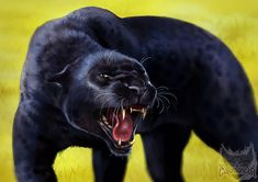 Catamancer Black Panther by TamberElla growl snarl monster beast creature animal | Create your own roleplaying game material w/ RPG Bard: www.rpgbard.com | Writing inspiration for Dungeons and Dragons DND D&D Pathfinder PFRPG Warhammer 40k Star Wars Shadowrun Call of Cthulhu Lord of the Rings LoTR + d20 fantasy science fiction scifi horror design | Not Trusty Sword art: click artwork for source