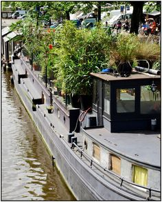 Houseboat Garden - See? An inventive person can have a garden nearly anywhere!