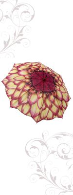 Bright Dahlia Collapsible Umbrella