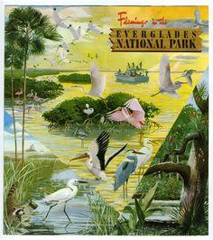 Vintage Florida Everglades