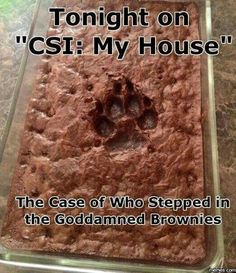 Who stepped in the brownies?