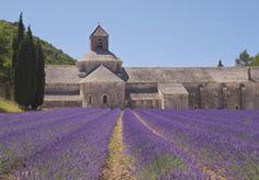 VitrA | Provence