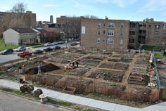 Chicago Community Garden