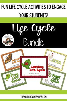 Butterfly, Frog, Ladybug, Plant and Chicken life cycle units. Life cycle activities, life cycle facts, life cycle worksheets, graphic organizers, read the room, anchor charts and more! Preschool Learning Activities, Spring Activities, Teaching Science, Hands On Activities, Teaching Ideas, Early Education, Childhood Education, Kindergarten Rocks, Chicken Life