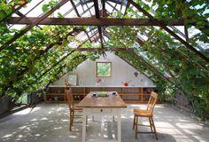 Magic trellis attic?