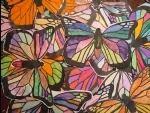 ambassador butterflies