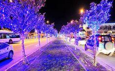 christmas 2014 Christmas 2014, Merry Christmas, Paradise, Greek, Merry Little Christmas, Wish You Merry Christmas, Greece, Heaven