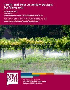 Construct and install vineyard trellis