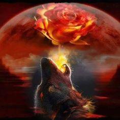 """ SPIRIT OF THE FIRE WOLF.....,"