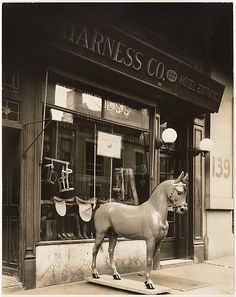 Harness Shop Horse Artist: Berenice Abbott (American, Springfield, Ohio 1898–1991 Monson, Maine) Date: 1930 Medium: Gelatin silver print Dimensions: Image: 24 x 19.1 cm (9 7/16 x 7 1/2 in.) Classification: Photographs