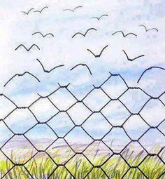 Fence to freedom