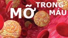 Bệnh máu nhiễm mỡ có chữa được không - Điều trị huyết áp cao