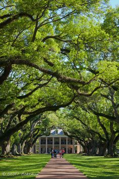 Oak Alley Plantation Home