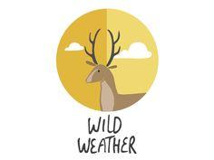 Wild Weather - Splash screen by Studio Brun