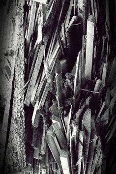 Dinamic wood 5