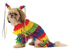 This is a collection of Halloween pet costumes. pet dresses Cat Clothes Costume Sex Nurse Suit Clothing For Halloween Costume. Best Dog Halloween Costumes, Pet Costumes, Costume Ideas, Halloween Ideas, Dog Dresses, Christmas Dog, Dog Photography, Dog Supplies, Party Supplies