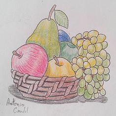 #illustration #ilustração #sketch #sketchbook #draw #drawing #desenho #fruits #frutas #cesta #basket