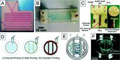 Risultati immagini per mjm printing multimaterial