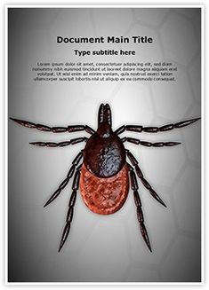 Tick MS Word Template is one of the best MS Word Templates by EditableTemplates.com. #EditableTemplates #Epidemic #Biology #Ixodid #Hard-Bodied Tick #Unhygienic, #Fauna #Small #Sucker #Acari #Parasitic #Tick #Arachnid #Bug #Extreme Ixodes Ricinus #Parasite #Arthropod #Infectious On White Ixodes #Medicine #Bloodsucker #Disease Carrier #Acarus #Medical #Close #Castor Bean Tick #Pest #Ricinus #Arachinoid