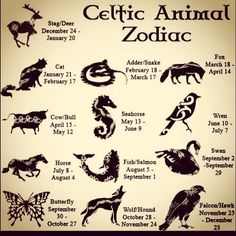 In-depth descriptions for all 13 CELTIC ZODIAC SIGNS. Learn all about your Celtic Animal Zodiac meanings, personality & traits. Celtic Astrology, too! Celtic Animals, Celtic Art, Celtic Signs, Celtic Zodiac Signs, Irish Celtic, Book Of Shadows, Numerology, Magick, Wicca Witchcraft