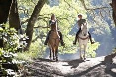 Gatlinburg Cabin Rentals shares things to know about horseback riding in Gatlinburg TN, such as popular riding stables, and other helpful information. Gaudi, Saint Macaire, Riding Stables, Saumur, Gatlinburg Cabin Rentals, Hills Resort, Cades Cove, Plan Your Trip, Horseback Riding