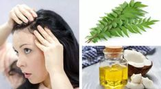 Curry Leaves and Coconut Oil Massage to Prevent Grey Hair Coconut Oil Hair Treatment, Coconut Oil Hair Growth, Coconut Oil Hair Mask, Grey Hair Remedies, Hair Remedies For Growth, Natural Remedies, Coconut Oil Massage, Prevent Grey Hair, Oil For Curly Hair