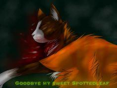Goodbye my sweet Spottedleaf by melo3001.deviantart.com on @DeviantArt