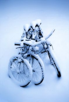 no snow on our bikes!