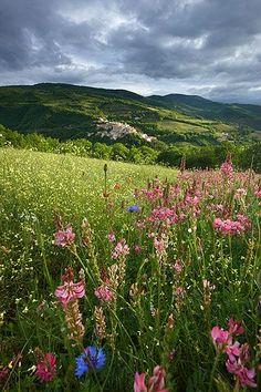 Springtime, Valnerina, #Umbria, #Italy